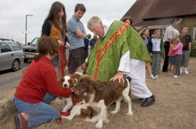 Blessing of the animals - sussex
