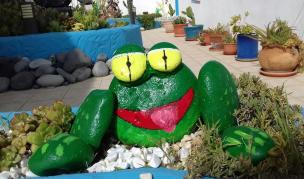 frog rock art