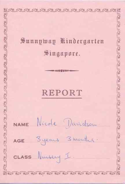 N's School Report P1